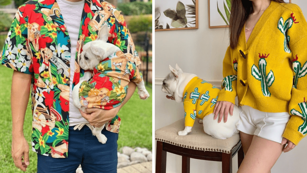 Two photos. Left of a man in a Hawaiian style shirt holding a small dog in a matching shirt. Right: Dog in a yelllow sweater with a cactus design posing with a woman in the same sweater.